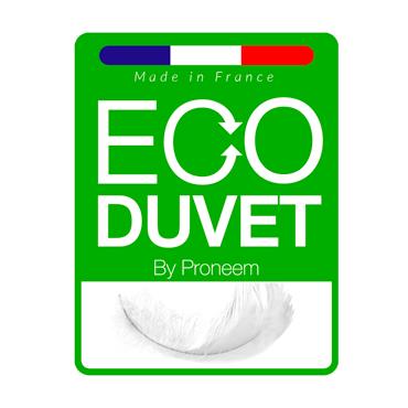Eco duvet 2019 logo